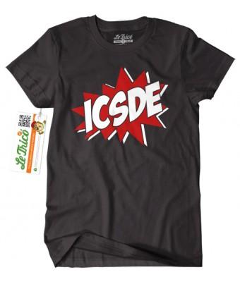 ICSDE