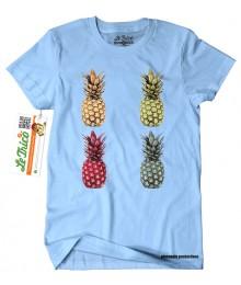 Pineapple V2 - Lichidare stoc