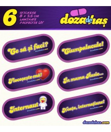 Set 6 Stickere Doza de Has