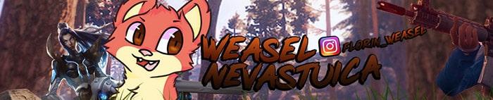 Shop Weasel Nevastuica